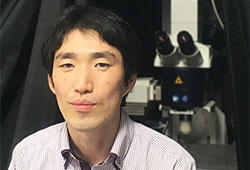 Assoc Professor Uchigashima awarded KAKENHI grant for Transformative Research Areas (A)