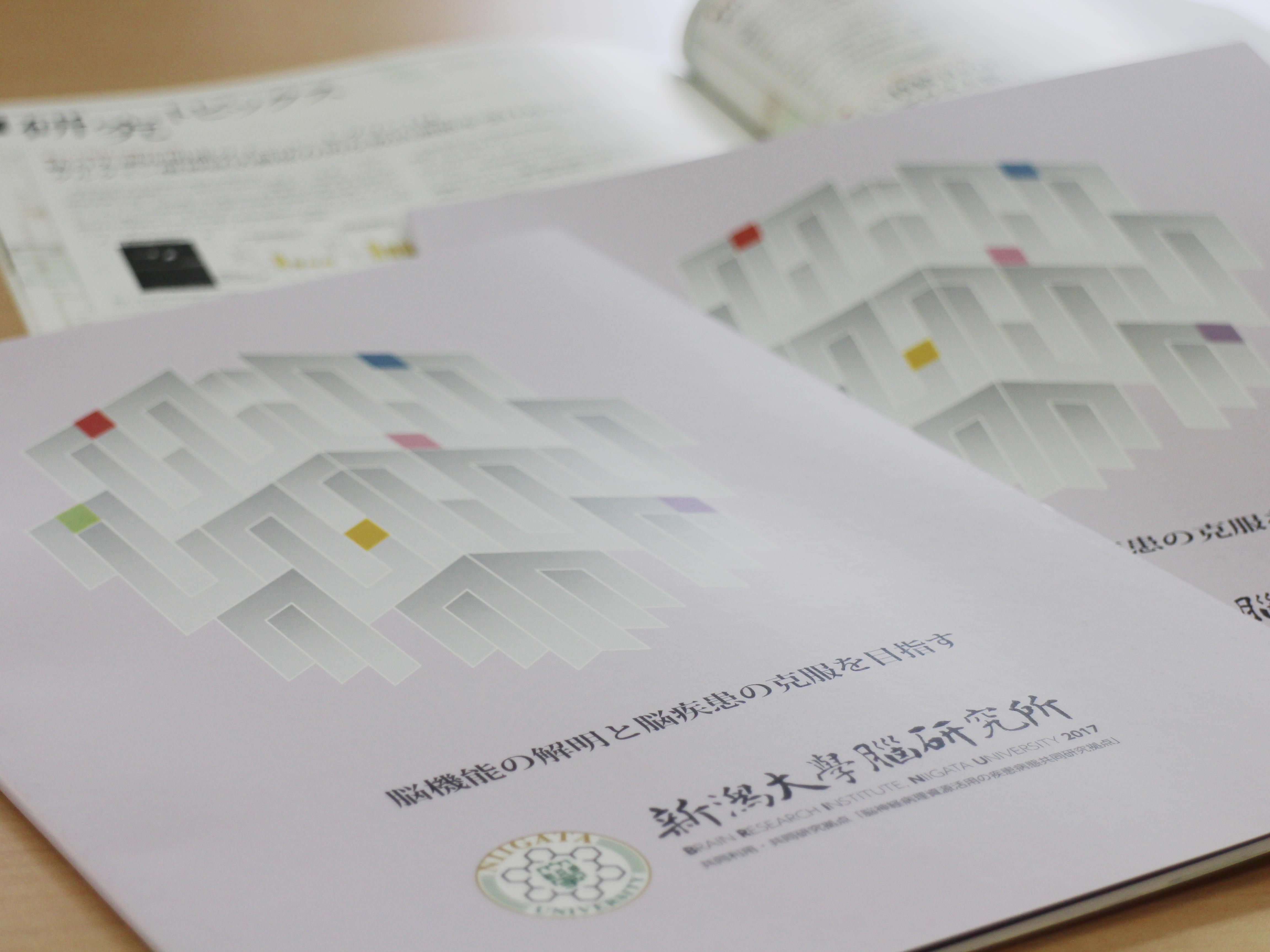 BRI Brochure 2017 published