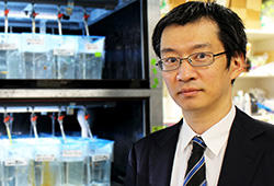 松井秀彰教授の研究が武田科学振興財団 2020年度「特定研究助成」に採択されました
