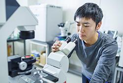 杉江准教授のハエを用いた希少疾患などの研究内容が新聞等に掲載されました